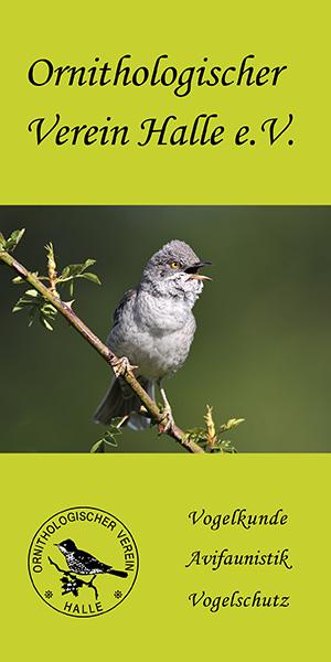 Neues Faltblatt über den Ornithologischen Verein Halle e.V.